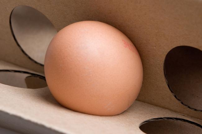 Pudełko na jajka (projekt studenta)5